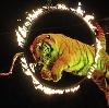Цирки в Вичуге
